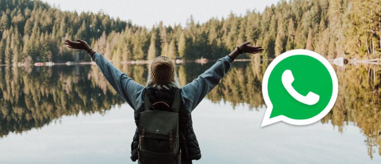 Cotizá por WhatsApp y mejorá tu tarifa hasta en un 40%